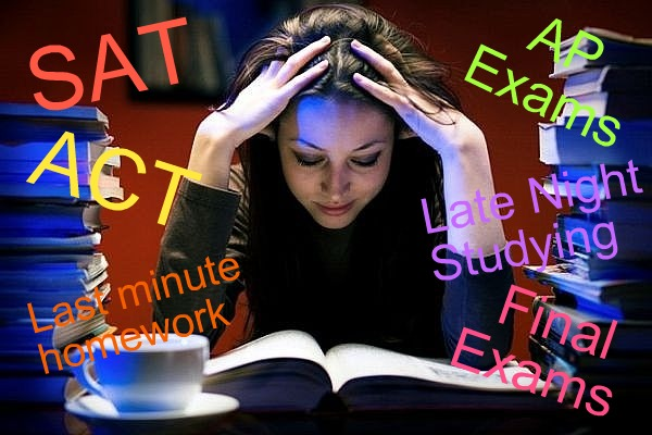 Stress School
